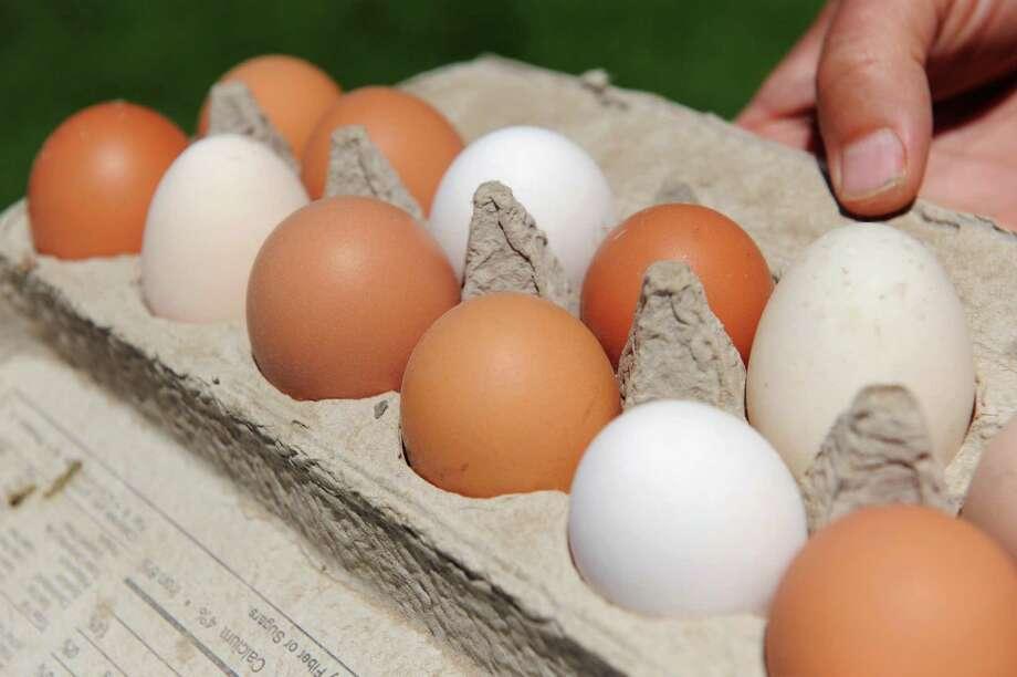Fresh farm eggs on Tuesday, July 22, 2015, at Beekman 1802 Farm in Sharon Springs, N.Y. (Cindy Schultz / Times Union) Photo: Cindy Schultz / 00032722A