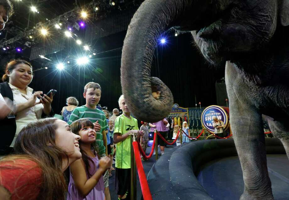 "Ringling Bros. and Barnum & Bailey put on a very special and personalized circus performance for children and families from Project Autism on the floor at NRG Stadium. Nicole Soriano (bottom left) and her daughter Leianna fed bread to Ringling Bros. and Barnum & Bailey elephant Kelly Ann. The children, ages 3 to 11, had an opportunity to be up close and personal to performers - both the two-legged and the four-legged varieties,  from ""The Greatest Show on Earth"" Wednesday, July 22, 2015, in Houston. Photo: Steve Gonzales, Houston Chronicle / © 2015 Houston Chronicle"