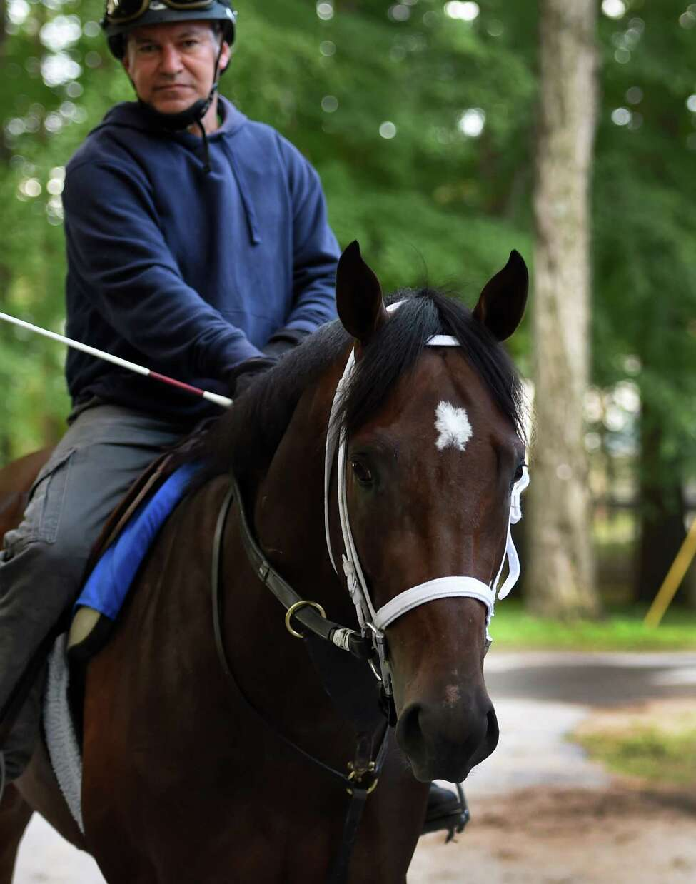 Jess's Dream goes out for his exercise this morning July 22, 2015, on the main track at the Saratoga Race Course in Saratoga Springs, N.Y. (Skip Dickstein/Times Union)