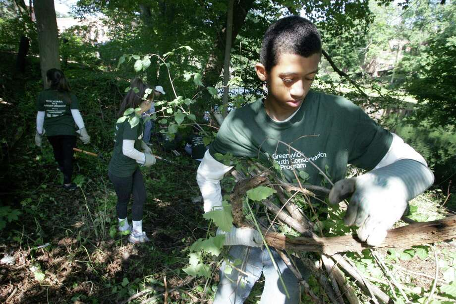 Oliver Polica, 14, of Greenwich, helps clean up an area known as the Glenville Green, a walking path near the Byram River in Greenwich on Wednesday. Several youth cleared the area of over grown brush, fallen trees and trash as part of a Youth Conservation Camp that work with the town to help maintain and and beautify Greenwich throughout the summer. Photo: Matthew Brown / For Hearst Connecticut Media / Connecticut Post Freelance
