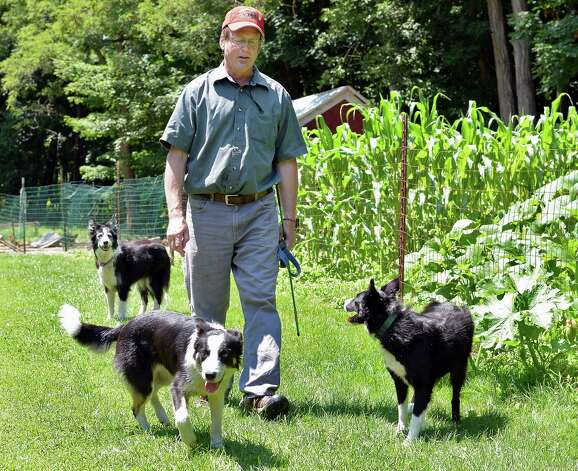 Eric Johnson and three of his border collies, Blade, Skye and Rhos Thursday July 16, 2015, at his Johnson Family Farm, a stop on the Outdoor Museum tour in New Lebanon, NY.  (John Carl D'Annibale / Times Union) Photo: John Carl D'Annibale / 00032639A