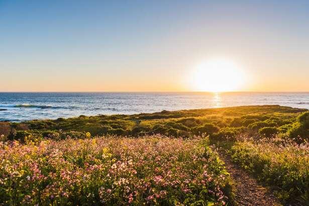 View of sea and path at sunrise, San Luis Obispo, California.