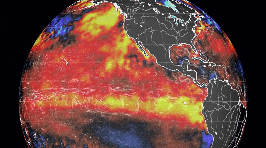 The present El Niño formation has the potential to become the strongest on record. The yellow areas indicate concentrations of warming water. Photo: Earth.nullschool.net