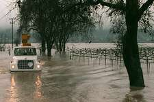 FLOOD-AG1/C/020398/MN/LC A utility truck in Napa County loses the road while driving past flooded vineyards south of Yountville Tuesday. (CHRONICLE PHOTO BY LARA CERRI) ALSO RAN: 03/04/98.