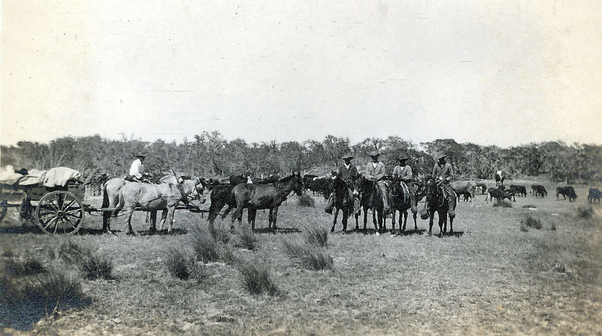 Cowhands on the Mcallen Ranch oversee cattle in this undated photo.