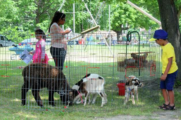 Children check out a petting zoo provided by Ponies for Hire during a festival to celebrate the improvements at Steinmetz Park and begin a new tradition for Goose Hill residents on Saturday July 25, 2015 in Schenectady, N.Y. (Michael P. Farrell/Times Union) Photo: Michael P. Farrell / 00032736A
