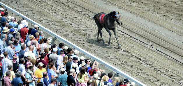 False Positive finishes the third race today without jockey Kendrick Carmouche after he was unseated at the Saratoga Race Course Sunday afternoon July 26, 2015 in Saratoga Springs, N.Y.    (Skip Dickstein/Times Union) Photo: SKIP DICKSTEIN