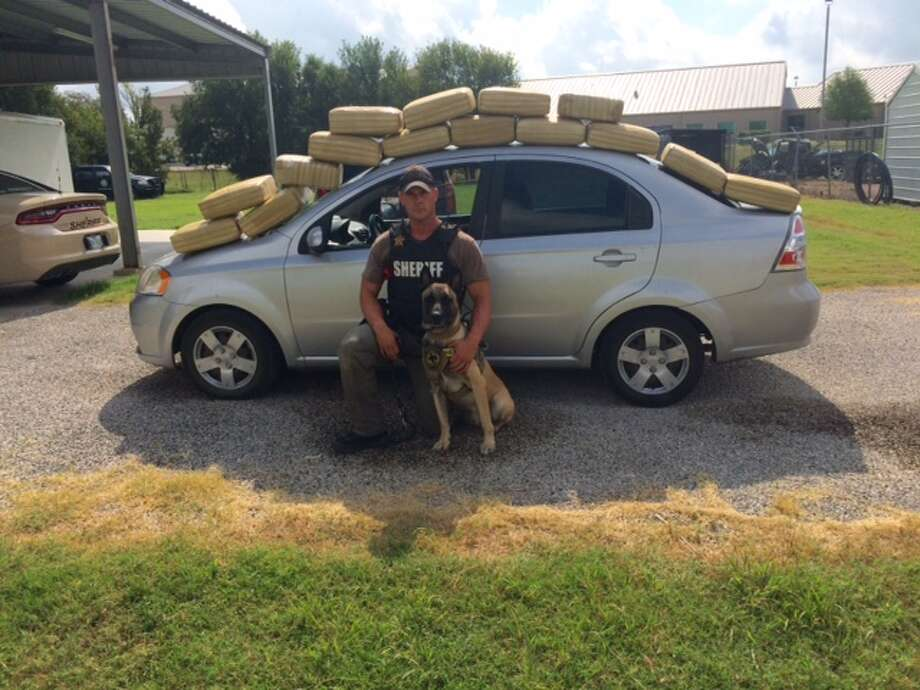 "This week Fayette County deputies reported that they seized nearly 200 pounds of marijuana from a small, silver Chevy passenger vehicle. The stop happened on Friday, July 24 just before 8:30 a.m. According to Sheriff Keith Korenek ""several criminal indicators were observed"" after a stop for a traffic violation was made and Deputy Randy Thumann and his canine Lobos received consent to search the vehicle. Photo: Fayette County Sheriff's Office"