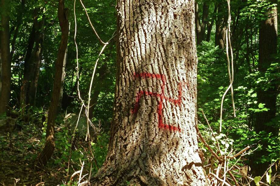 Police found five red spray-painted swastikas in Olsen Woods Bird Sanctuary in Darien near the Stamford line Sunday, July 19. Pictured is one of the defaced trees on a wooded path. Photo: Martin Cassidy / Hearst Connecticut Media / Darien News
