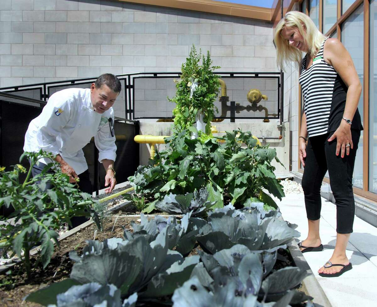 Kerry Gold, head of dining services and chef for New Milford Hospital, left, and Kara Sylvia, with Tower Garden, talk about the hospital's rooftop garden.