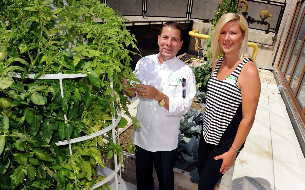 Remarkable New Milford Hospitals Tower Garden Brings Food To New Heights  With Lovable Kerry Gold Head Of Dining Services And Chef For New Milford Hospital Left With Extraordinary Harpenden Garden Centre Also The Garden Of Love In Addition Gardeners Gift Set And Sea Garden Sharm El Sheikh As Well As Curry Garden Weston Super Mare Additionally Designs For Small Gardens From Newstimescom With   Lovable New Milford Hospitals Tower Garden Brings Food To New Heights  With Extraordinary Kerry Gold Head Of Dining Services And Chef For New Milford Hospital Left And Remarkable Harpenden Garden Centre Also The Garden Of Love In Addition Gardeners Gift Set From Newstimescom