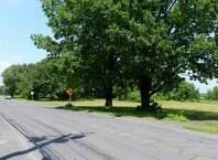 Site of a proposed site for a medical marijuana growing facility, including greenhouse, manufacturing and parking at 301 Old Niskayuna Rd. Tuesday, July 28, 2015, in Colonie, N.Y. (Will Waldron/Times Union)