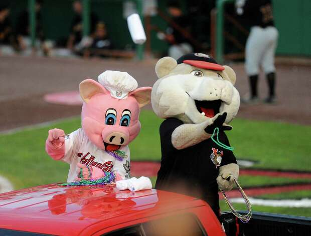 Tri-City ValleyCats mascots Ribbie, the pig, left, and Southpaw toss T-shirts to fans  during a baseball game against the West Virginia Black Bears in Troy, N.Y., Tuesday, July 28, 2015. (Hans Pennink / Special to the Times Union) ORG XMIT: HP111 Photo: Hans Pennink / 00032715A