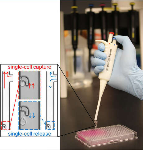 The handheld single cell pipette, invented by researchers at Houston Methodist, can capture and transfer a single cell in under 10 seconds. Photo: Houston Methodist