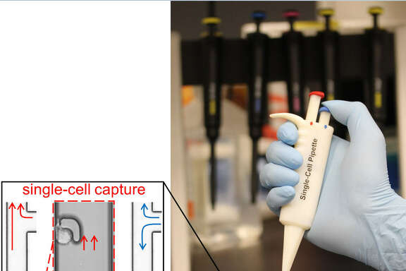 The handheld single cell pipette, invented by researchers at Houston Methodist, can capture and transfer a single cell in under 10 seconds.