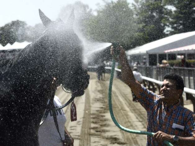 Trainer Rudy Rodriguez cools off American Progress after the second race at Saratoga Race Course on Wednesday. By 2 p.m., the temperature was up to 90 degrees in Saratoga Springs. (Skip Dickstein / Times Union)