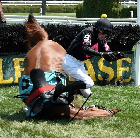 Cul Baire unseats his jockey Paddy Young after the last fence of a two and one sixteenth mile steeplechase even on the inner turf track at the Saratoga Race course this afternoon July 29, 2015 in Saratoga Springs, N.Y.  Neither horse nor jockey were injured in the fall.    (Skip Dickstein/Times Union) Photo: SKIP DICKSTEIN