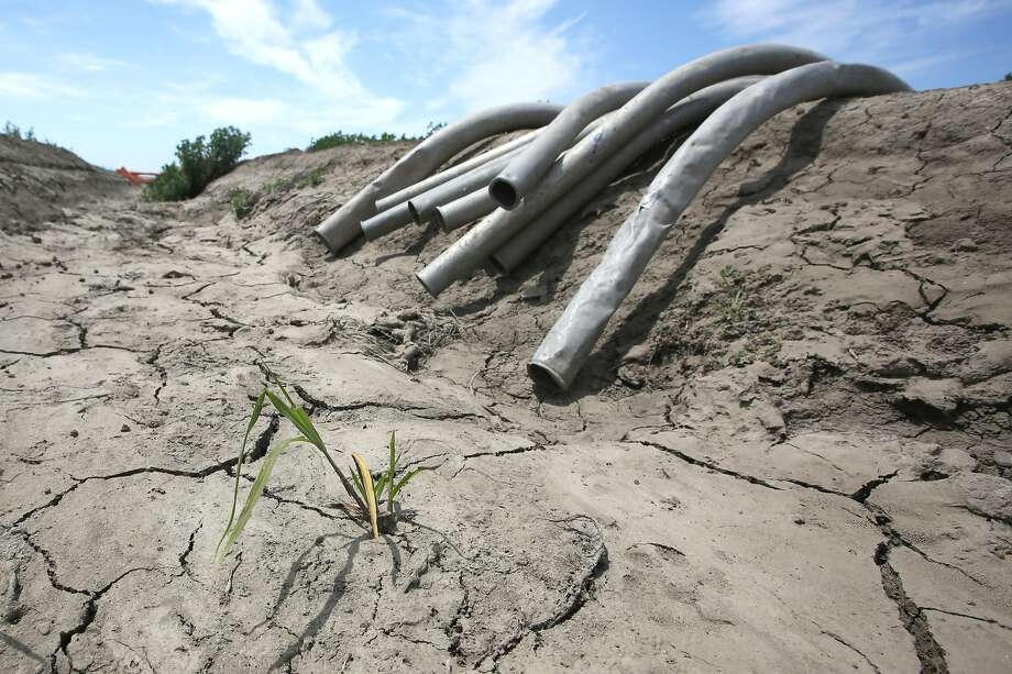 Irrigation pipes sit along a dried irrigation canal on a field near Stockton in May. Photo: Rich Pedroncelli, Associated Press