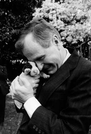 President  George H.W. Bush holds one of first dog Millie's six puppies for the press on Wednesday, March 29, 1989 at the White House in Washington. Photo: Ron Edmonds, ASSOCIATED PRESS / AP