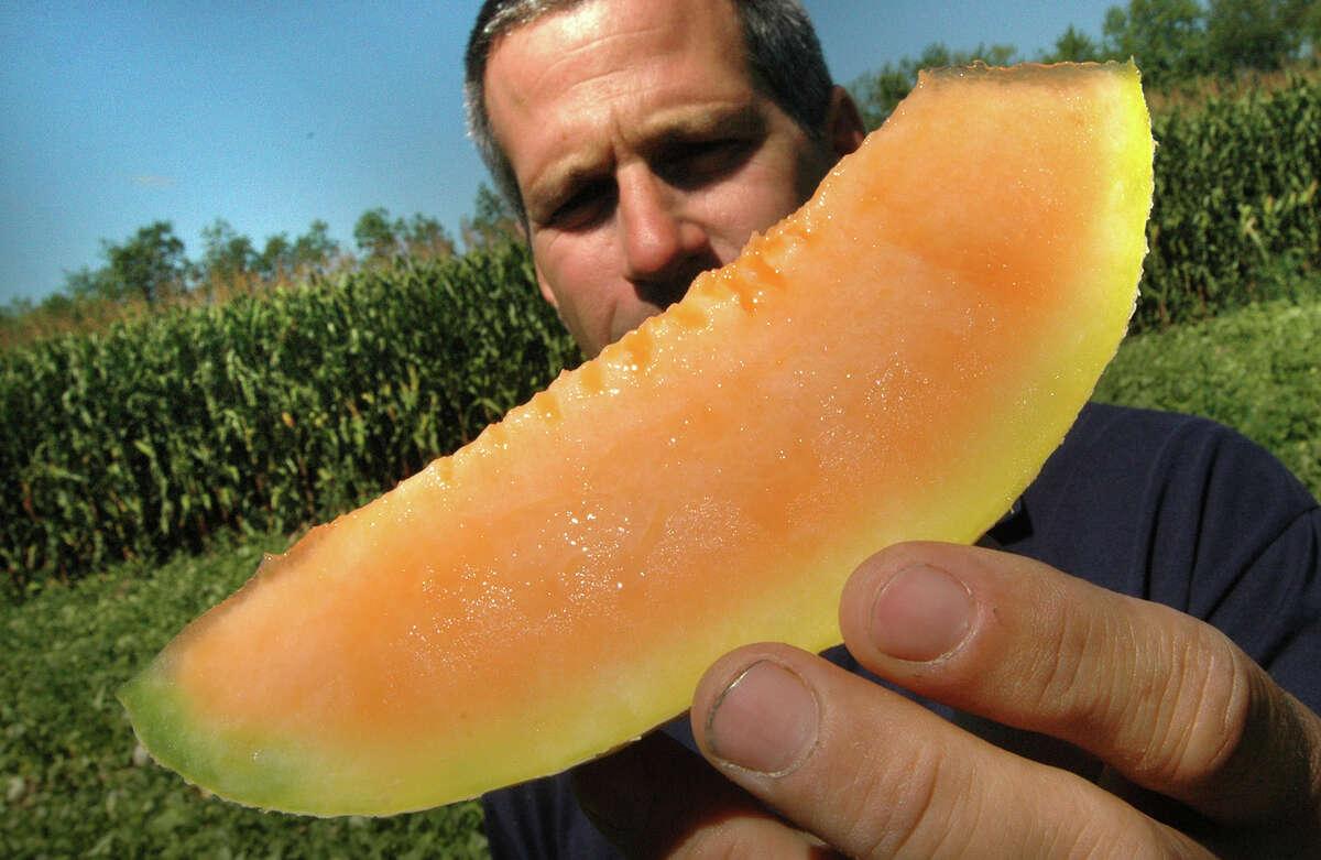 Times Union photo by STEVE JACOBS John Hand shows off a slice of a saticoy melon on the Hand Melon Farm, Thursday,August 25,2005.