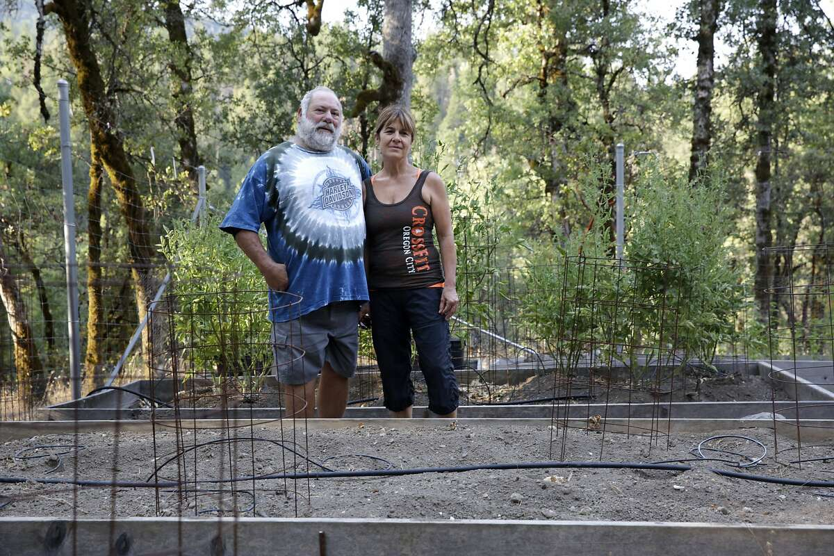 Mark Harzarian and his wife, Linda Tucker, pose for a portrait in their garden near their home in Oak Run (Shasta County) on Friday, July 31, 2015. Harzarian and his wife, Linda Tucker, have watched an important creek on their property dwindle due to the drought and diversions for marijuana grows. They've had to reduce the size of their garden in response.