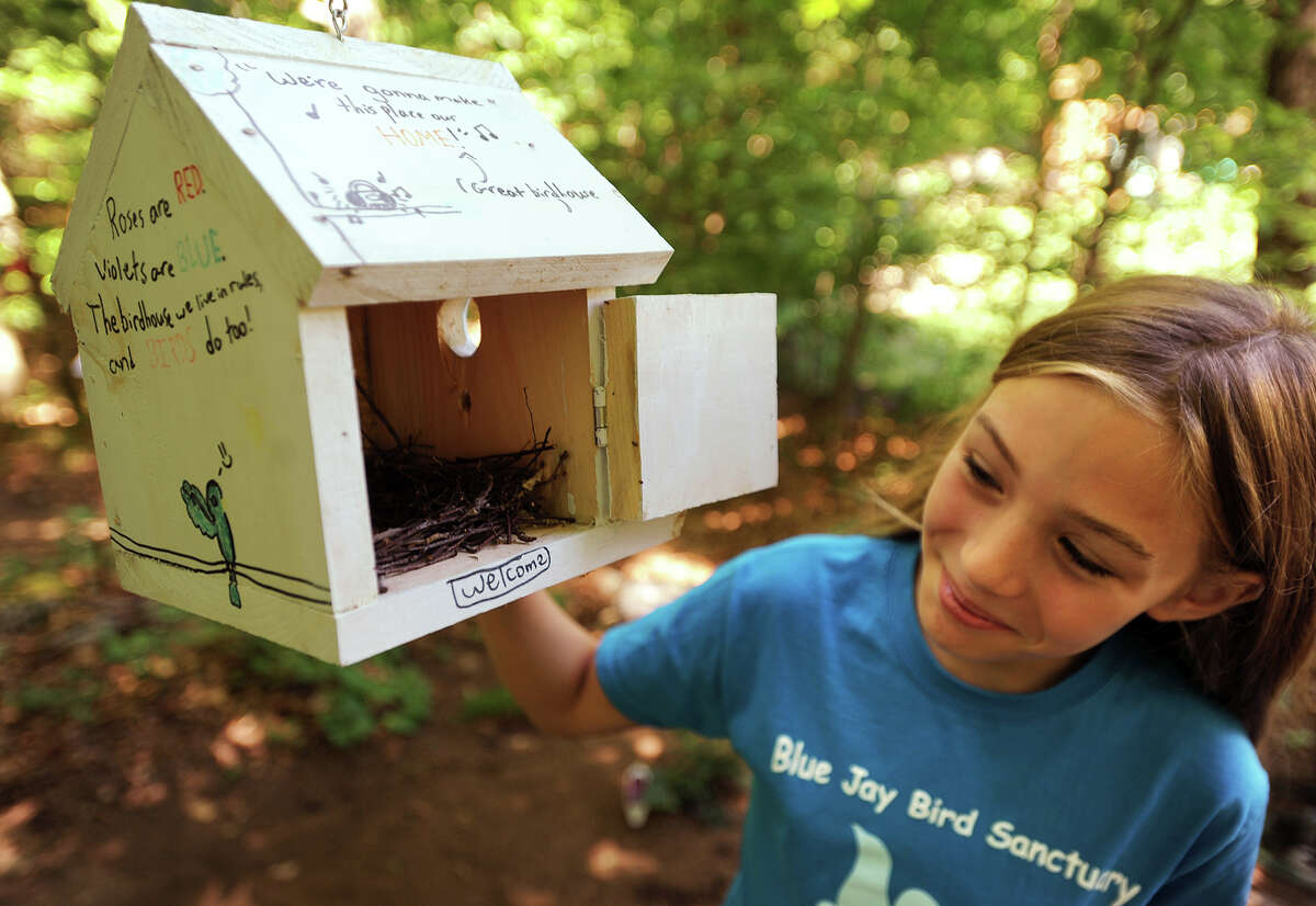Kaitlyn Lapine, 10, of Monroe, looks in on a bird nest in the Blue Jay Bird Sanctuary she recently created with the assistance of friends and family in the woods behind her home in Monroe.