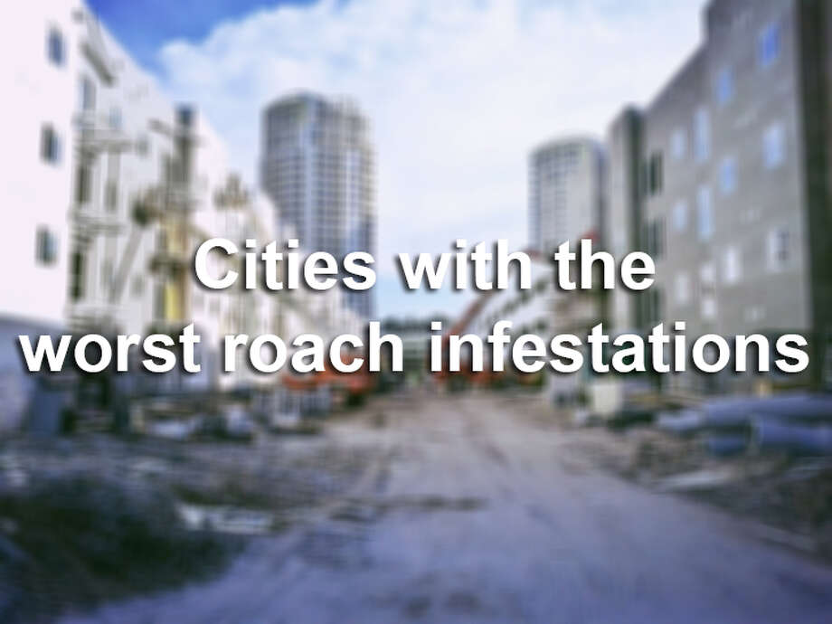 According to the American Housing Survey from the U.S. Census Bureau, these 25 cities had the worst reported instances of roach infestations during the past 12 months. Photo: Martel Mendez / EyeEm, File Photo / EyeEm