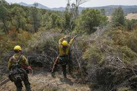 Firefighters Cody Morris (left) and Rafael Morales work to tie together fire lines as mop-up duty along Morgan Valley Road near Lower Lake, Calif., on Saturday, Aug. 1, 2015. By clearing brush, highly-flammable areas can be contained. Their strike crew traveled to the Rocky Fire from headquarters at the Salyer Forest Service Guard Station in Salyer, Calif.
