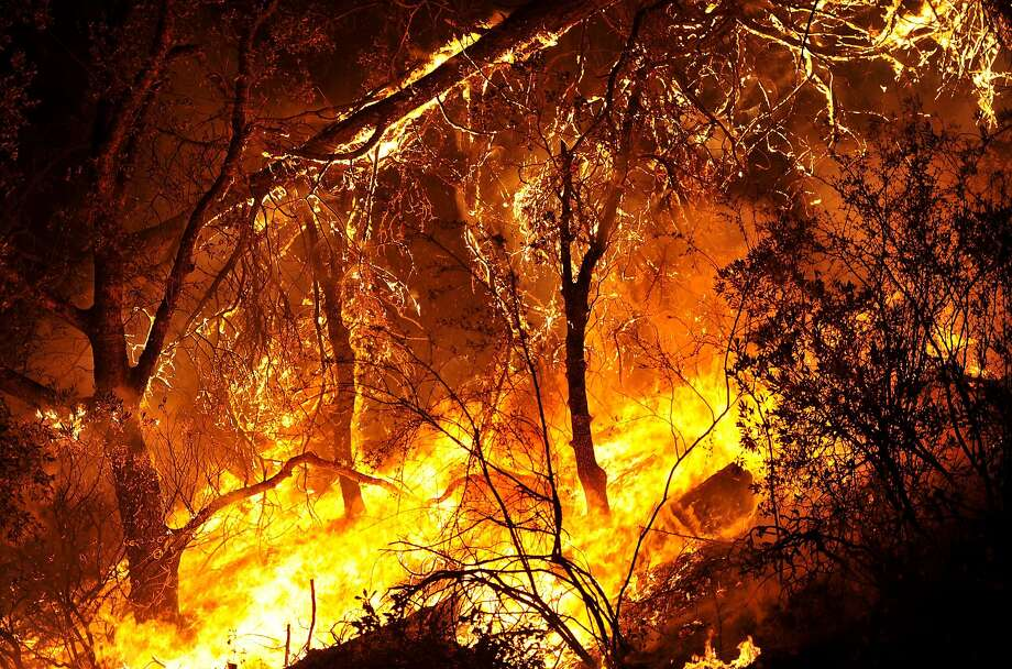 Brush and trees burn during the Rocky fire off highway 20 near South Lake, California on August 2, 2015. The fire has charred more than 27,000 acres, and is currently only 5% contained. Photo: Josh Edelson, AFP / Getty Images