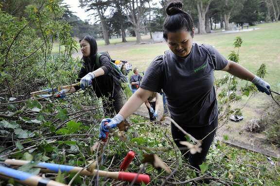 Sophia Wong, left, and Carissa Ortega, members of Greenagers, a Parks and Recreation youth group, chop away at overgrown vegetation on a hillside as they help clean up at Crocker Amazon park in San Francisco, CA Saturday, August 1, 2015.