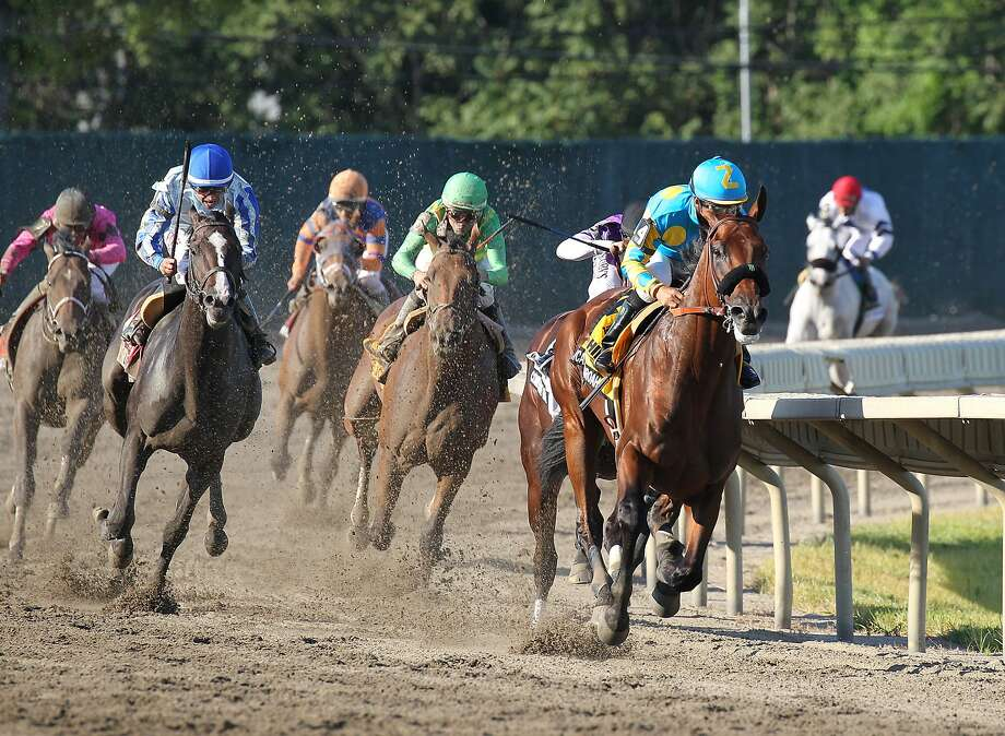 American Pharoah, with Victor Espinoza up, leads around the final turn at Monmouth Park. Photo: Ryan Denver, Associated Press