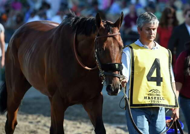 Triple Crown winner American Pharoah is lead to the paddock for saddling Sunday Aug. 2, 2015 at Monmouth Park in Oceanport, N.J. for his participation in the 48th running of The Haskel Invitational.    (Skip Dickstein/Times Union) Photo: SKIP DICKSTEIN