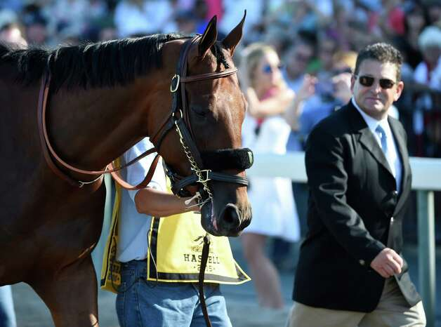 Triple Crown winner American Pharoah is lead to the paddock for saddling accompanied by his assistant trainer Jimmy Barnes, right,  Sunday Aug. 2, 2015 at Monmouth Park in Oceanport, N.J. for his participation in the 48th running of The Haskel Invitational.    (Skip Dickstein/Times Union) Photo: SKIP DICKSTEIN