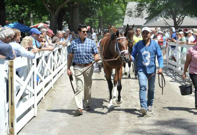 Rachel's Valentina is walked into the paddock area before the second race at the Saratoga Race Course on Sunday, August 2, 2015, in Saratoga Springs, N.Y.     (Paul Buckowski / Times Union) Photo: PAUL BUCKOWSKI / 10032858A