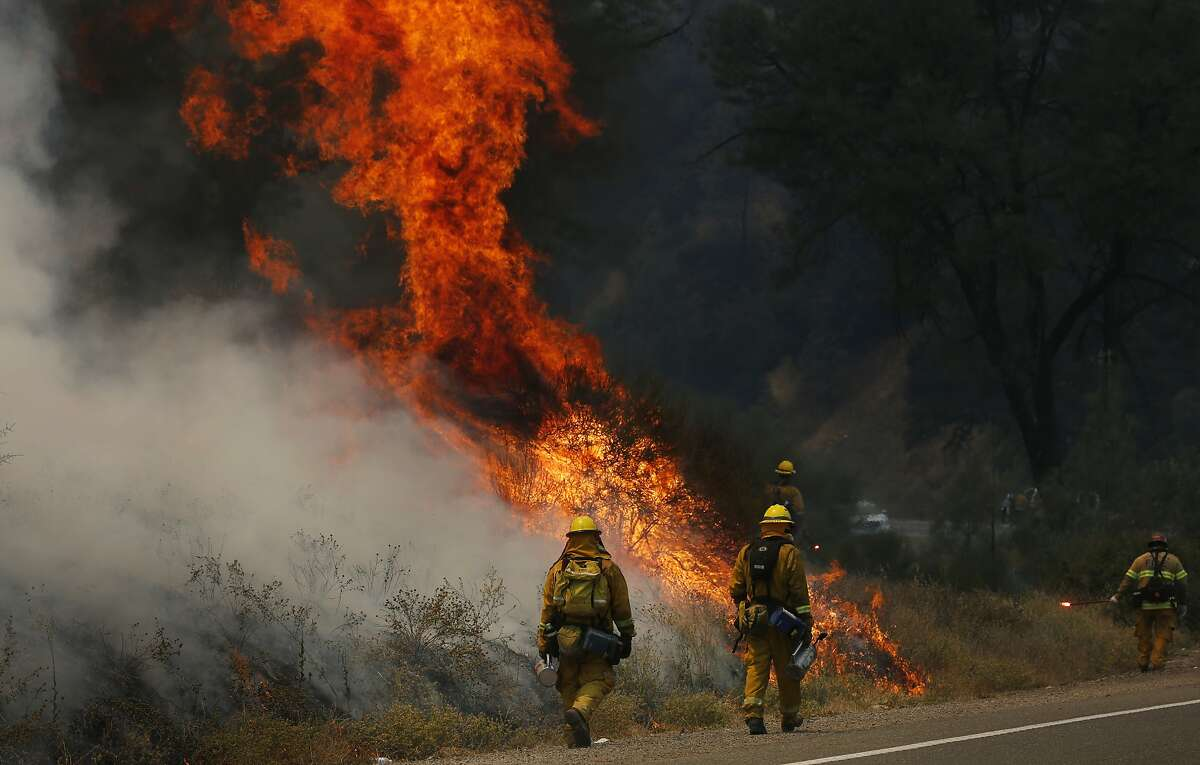 Firefighters make a stand against the Rocky Fire off of highway 20 August 3, 2015 in Lake County, Calif.