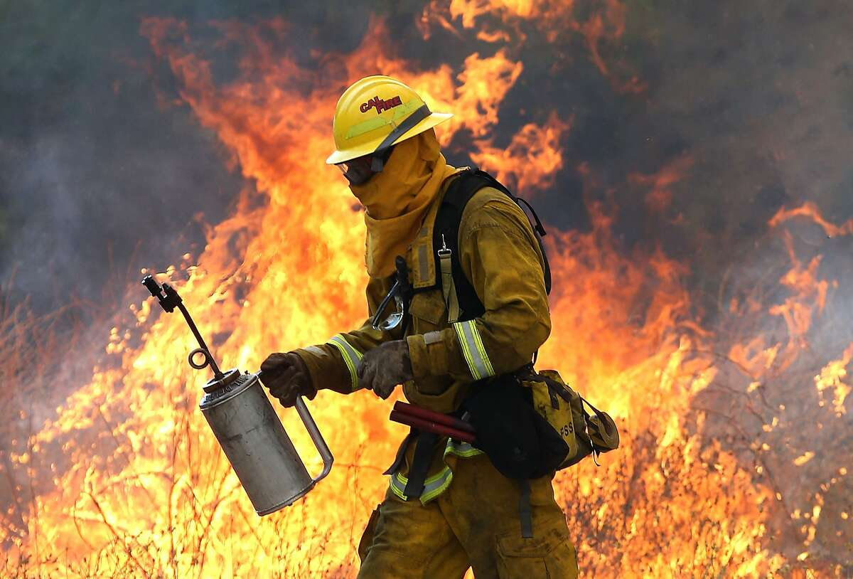 A Cal Fire firefighter moves away from a tall flame as he uses a drip torch to burn dry grass during a backfire operation to head off the Rocky Fire on August 3, 2015 near Clearlake, Calif.