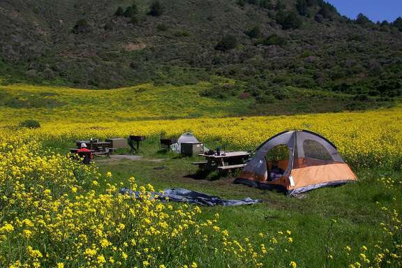 Wildcat Camp, a hike-in backpacker's camp at Point Reyes National Seashore within close range of a wilderness beach, is one of the Bay Area's most popular campgrounds, with all campsites booked full all weekends from late summer and into fall and a sprinkling of available dates on weekdays Wildcat camping site No. 4