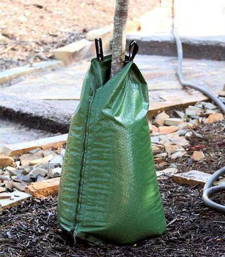 A Treegator Slow Release Watering Bag on a newly planted tree.. Photo: Home Gardening Products