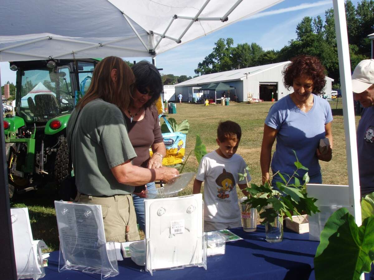 The Tolland County 4-H Fair takes place August 7-9 in Vernon, CT.