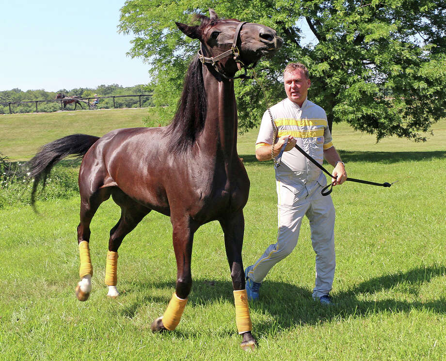 This photo provided by the United States Trotting Association shows Hambletonian contender Mission Brief and trainer Ron Burke going for a walk at Gaitway Farm in Manalapan, New Jersey, Monday, Aug. 3, 2015. Mission Brief is the 6-5 favorite in her elimination race and will compete this Saturday, Aug. 8, in the $1.2 million Hambletonian harness race for 3-year-old trotters at the Meadowlands Racetrack in East Rutherford, New Jersey. (Mark Hall/United States Trotting Association via AP) ORG XMIT: NY164 Photo: MARK HALL / United States Trotting Association