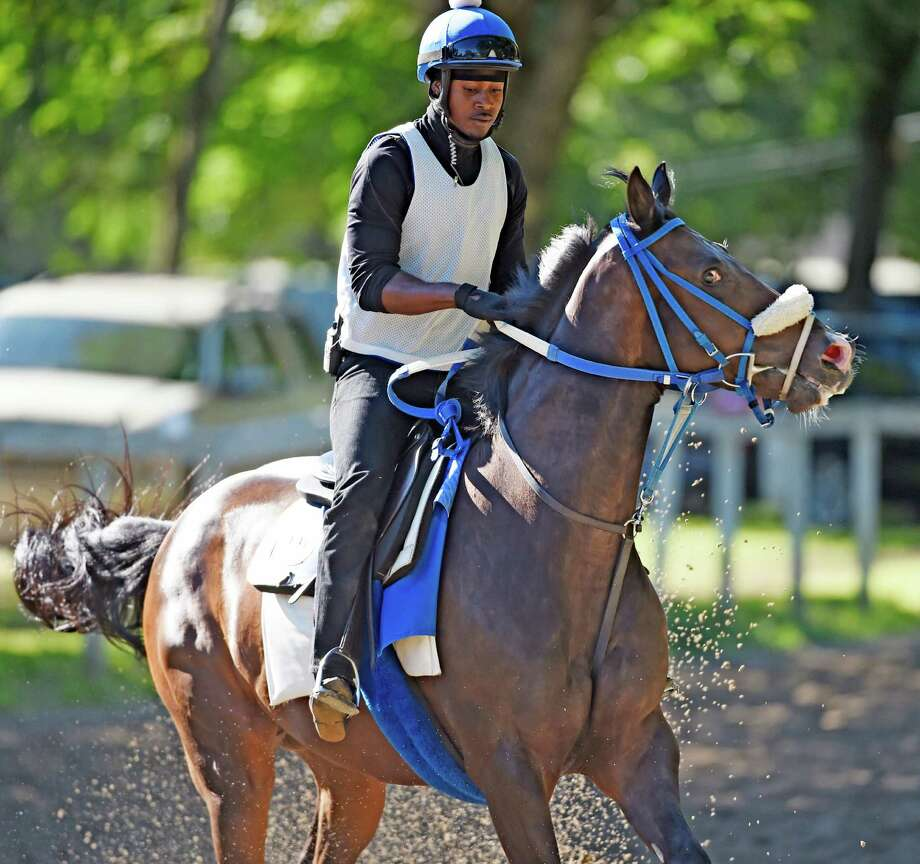 Keveh Nicholls takes a hold of Waco who is feeling really good this morning Aug. 6, 2015 on the Clair Court training track near the Saratoga Race Course in Saratoga Springs, N.Y.  Waco is by sire Medaglia D'Oro and is the trainee of H. James Bond and was a winner last weekend and is scheduled to run again towards the end of the race meeting.  (Skip Dickstein/Times Union) Photo: SKIP DICKSTEIN