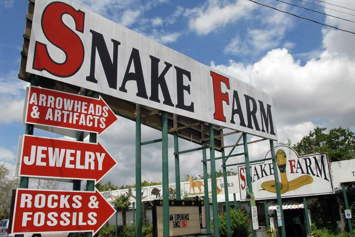 In its near 50-year history, the Snake Farm off Exit 182 on Interstate 35 has evolved from a campy carnival show to a popular family-friendly zoo. Click ahead for 16 facts behind this iconic, quirky Texas tourist spot.