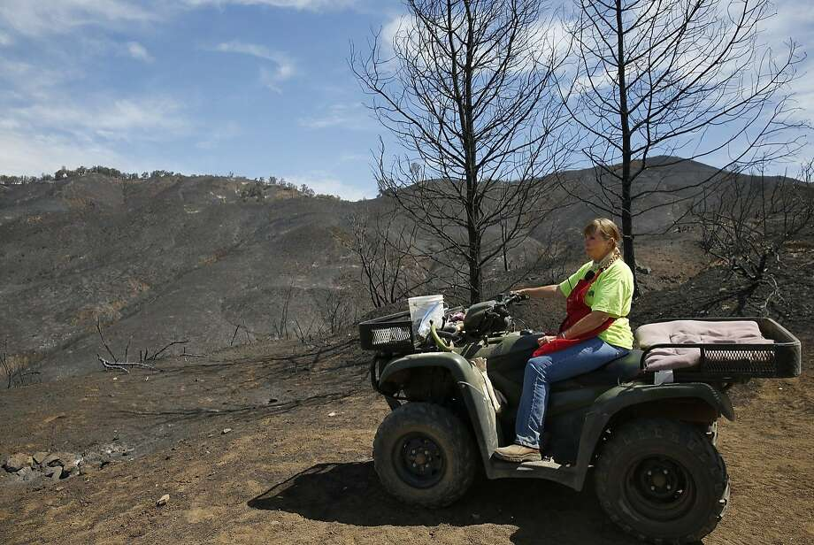 Lonne Sloan, 65, poses for a portrait on her ATV in front of scorched land on her property that was burned by the Rocky Fire in the last week August 7, 2015 outside of Lower Lake, Calif. Sloan and her husband used an old firetruck they own along with bulldozers and firefighters to protect their home which would have most certainly been lost otherwise. Of the 342 acres the Sloans own, she said that at least 300 of it has burned, including their shed and other valuable, uninsured items. Now they are hosting neighbors who lost their homes down the road. The fire was at 45% containment having burned 69,600 acres as of Friday morning. Photo: Leah Millis, The Chronicle