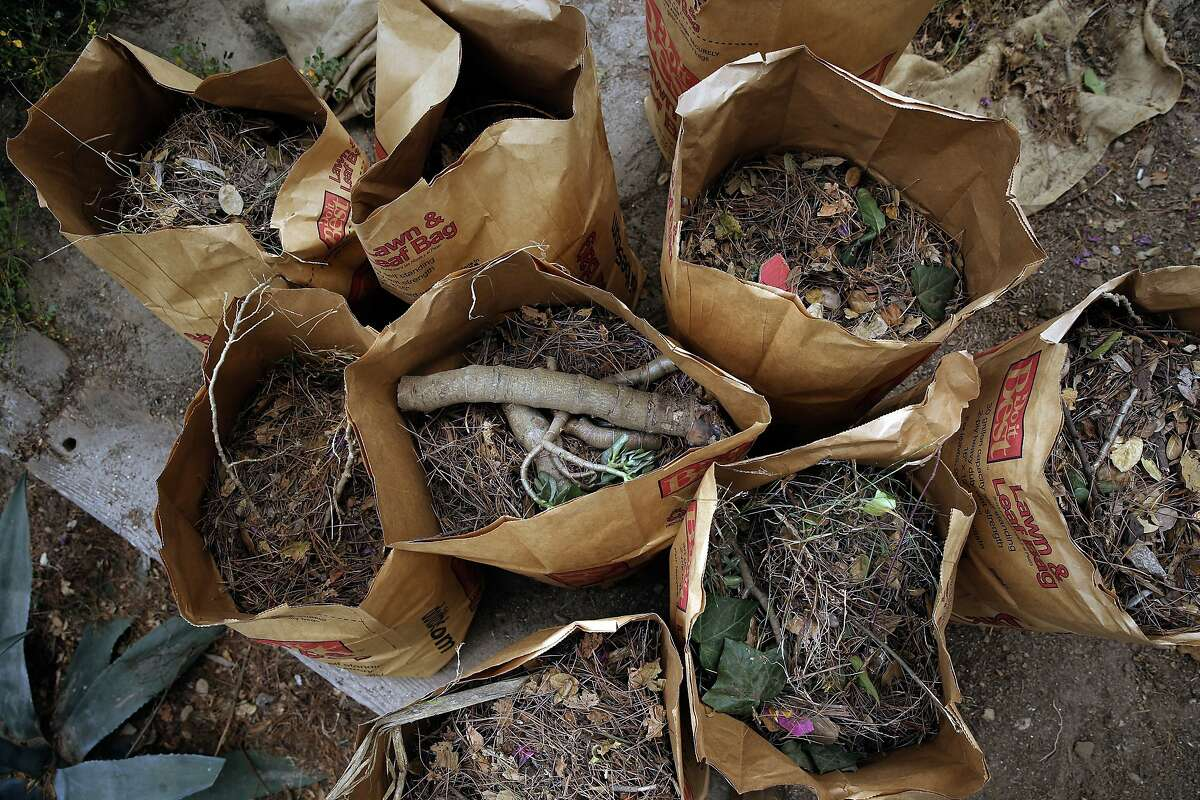 Bags are filled with garden debris is collected as dozens of volunteers and neighbors join the San Francisco Public Works August Community Clean Team in the restoration of the Esmeralda Slide Park Plaza in San Francisco, Calif., on Sat. August 8, 2015.