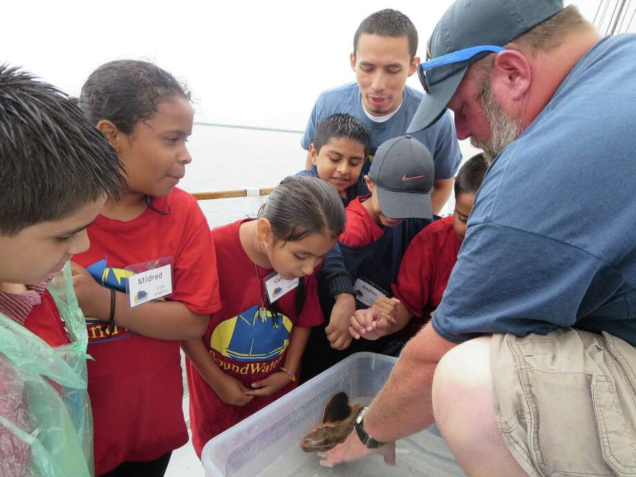 Students from the Summer STEM Academy at SoundWaters Coastal Education Center went out on the SoundWaters schooner on July 9 as part of their hands-on education. Photo: Contributed / Contributed / Stamford Advocate Contributed