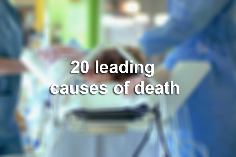 top 3 leading causes of death Nutritional causes of death gbd profile: germany the top five leading causes of ylds in germany are low in germany, the top three causes of dalys in 2010.