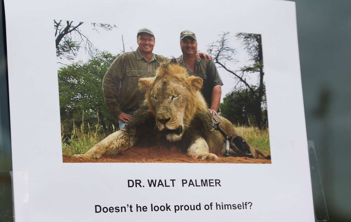 A sign posted on the door at River Bluff Dental, the practice ofDr. Walter Palmerin Bloomington, Minn. Before Palmer killed the beloved lion Cecil (shown in photo), he illegally hunted bear in Wisconsin.