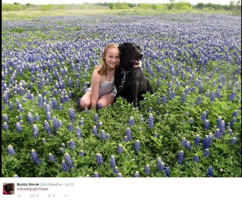 """#GrowingUpInTexas,"" @No1RebelFan Photo: Mendoza, Madalyn S, Twitter.com"