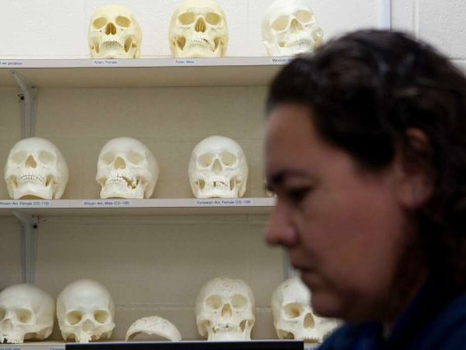 An entomologist works at the Harris County Institute of Forensic Science.