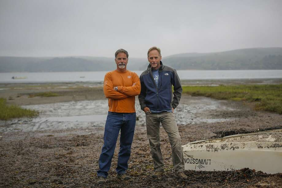 Hog Island Oyster Company owners Terry Sawyer (left) and John Finger are seen at the company's headquarters in Marshall, Calif., on Friday, July 31, 2015. Both Sawyer and Finger have backgrounds in marine biology, leading to their keen interest in collaborating with the UC Davis Marine Lab in nearby Bodega to better understand ocean acidification's effect on Tomales Bay aquaculture. Photo: Loren Elliott, The Chronicle